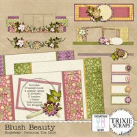 Blush Beauty Blogger Template Theme Everyday Flowers