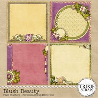 Blush Beauty Digital Scrapbooking Page Starters Everyday Flowers